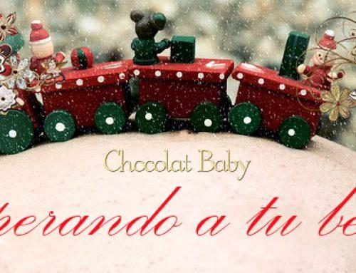 Embarazo y Navidad , que puedo comer